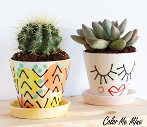 Colorado Springs Cute Planters